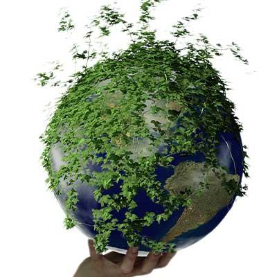 Vantaggi Certificazione Ambientale Iso 14001